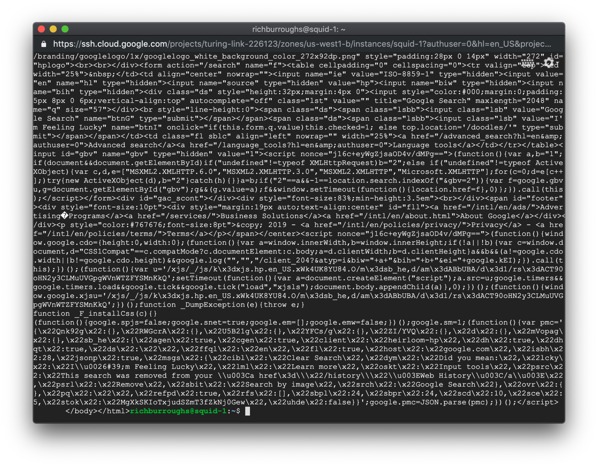 Curl command output