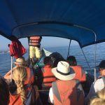 Barco-táxi de volta ao continente (no Panamá)