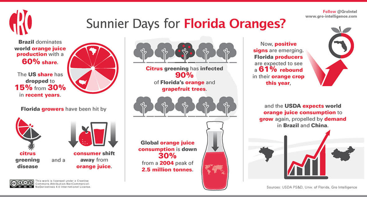 A Sweeter Outlook for Florida Orange Juice | Gro Intelligence