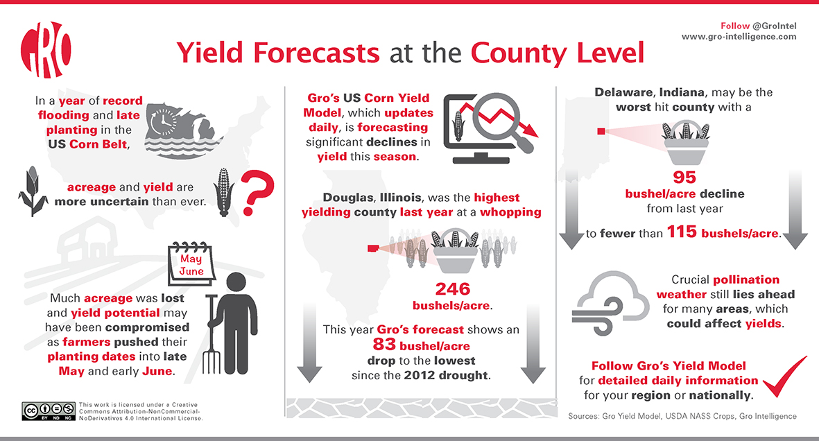 Yield Forecasts at the County Level