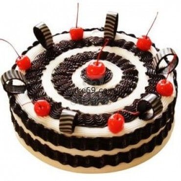 Yummy Chocolate Berry Cake