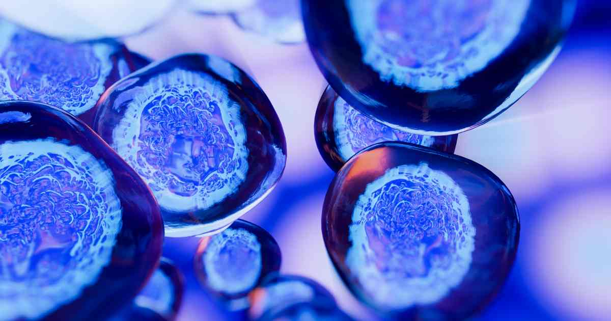 Could stem cells be used as a cure for covid-19