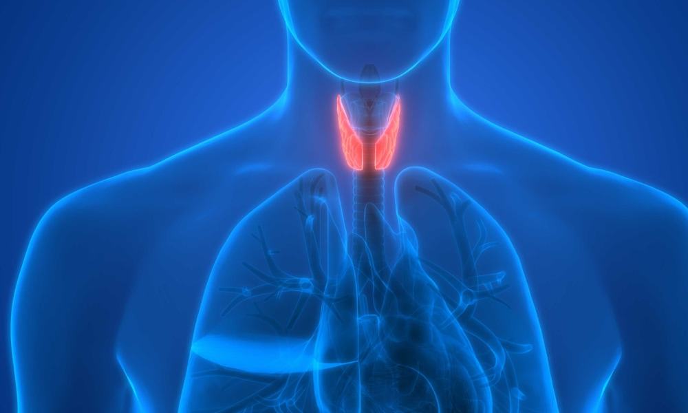 Thyroid Disease And Diabetes What Does The Thyroid Do Hypothyroidism