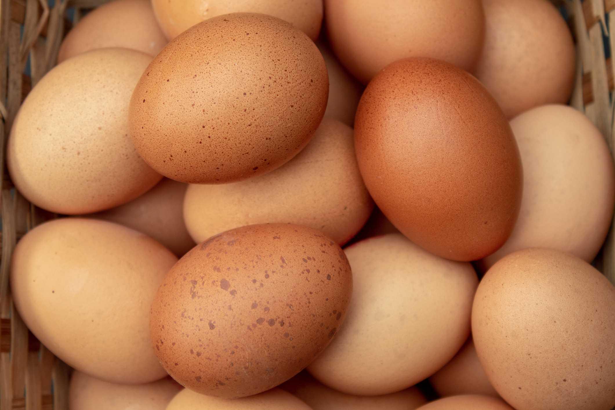 Eggs, Beans & Pulses