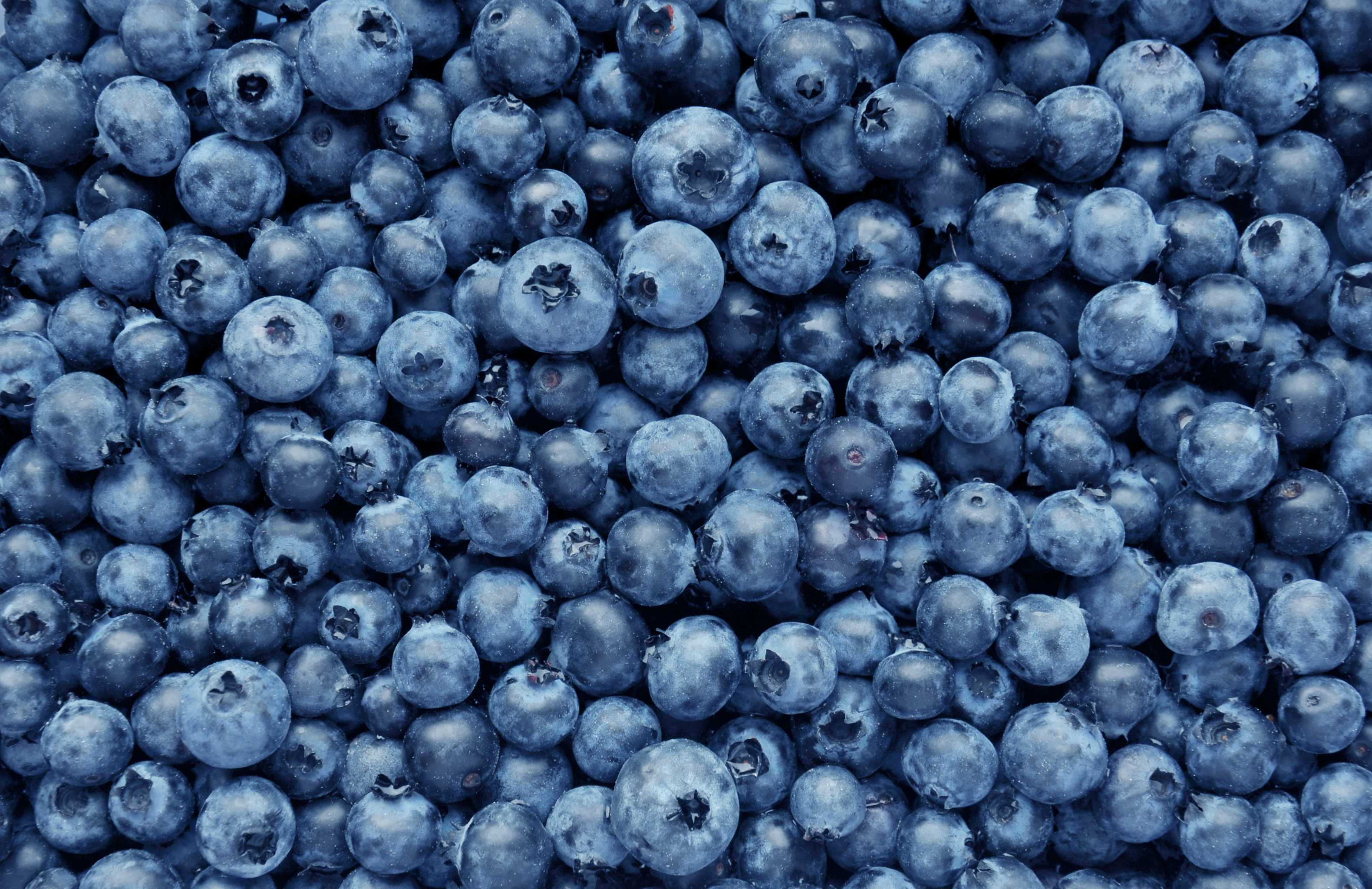 Blueberry Smoothie (Serves 1)