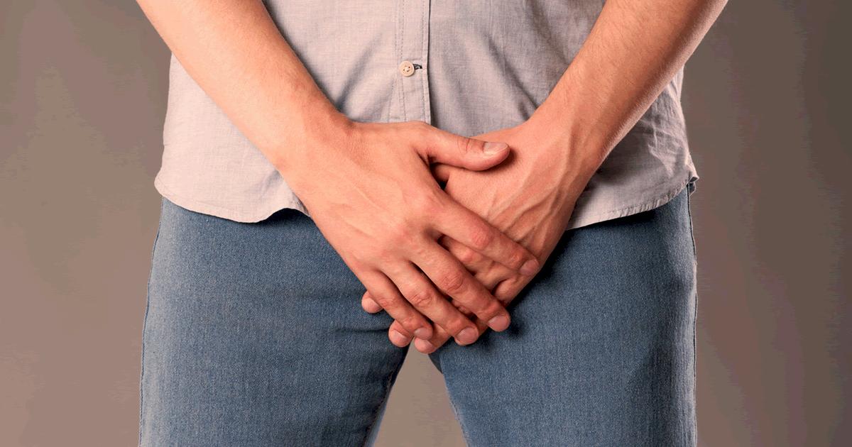penisul genital feminin)