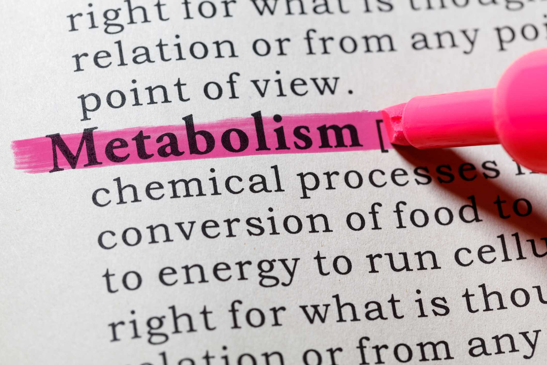 Diabetes And Metabolism Affect Of Diabetes On Metabolism