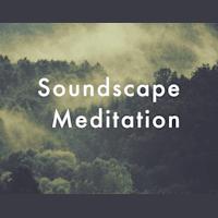 Soundscape Meditation - Wild Wolfs Yoga
