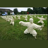 Yang Style Tai Chi with Jingshen Healing Arts - St Werburghs Community Centre