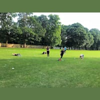 Trowbridge Park Fitness Group