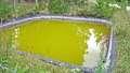 Greenish water in small reservoir