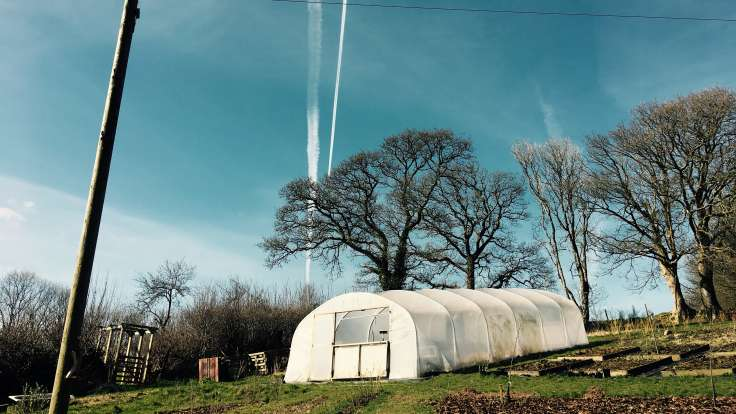 Photo of polytunnel on a slope with raised beds to the side, mature leafless trees behind and blue sky