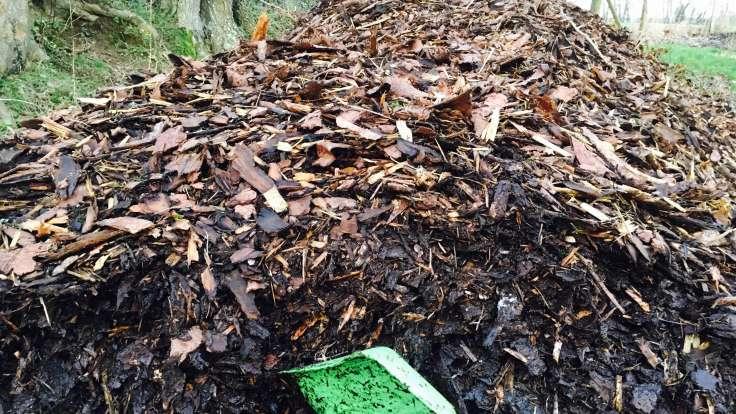 A mound of bark