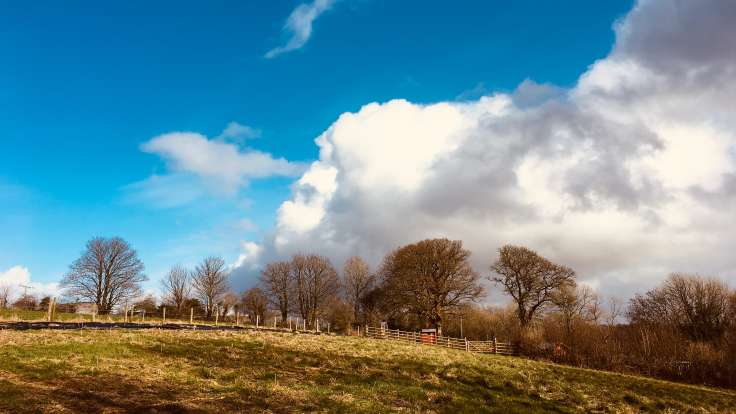Big cumulus cloud, blue sky over mature trees on horizon, new garden foreground