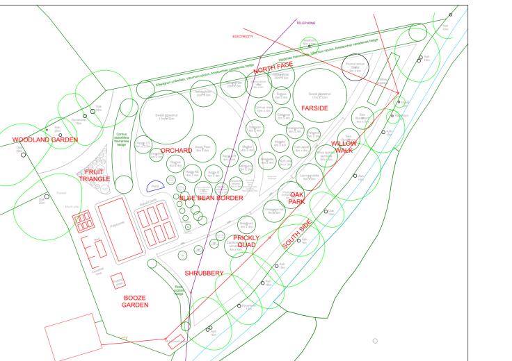 CAD plan of forest garden