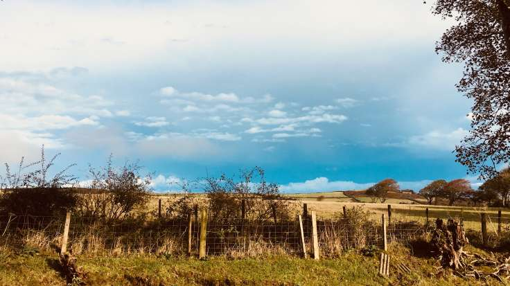 View over stock fence to cloudy sunlit sky