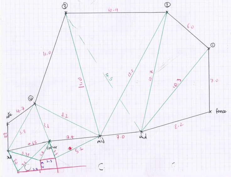 Outline of garden on graph paper triangulated with interconnecting triangles
