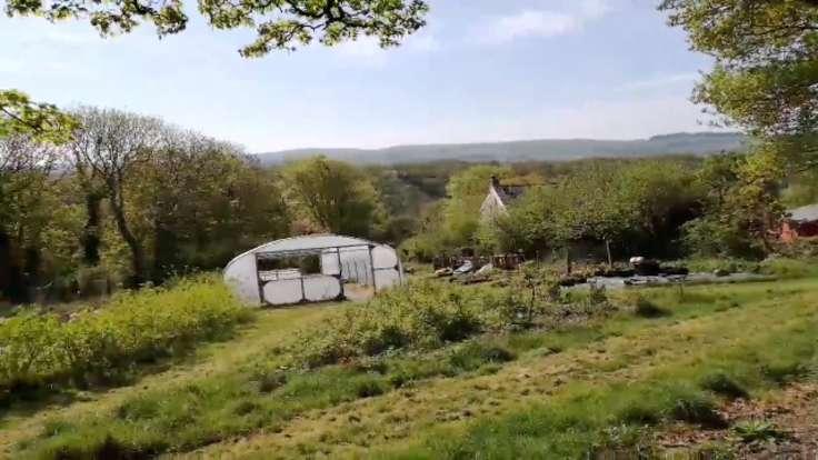 Screenshot of video, showing valley, polytunnel & forest garden