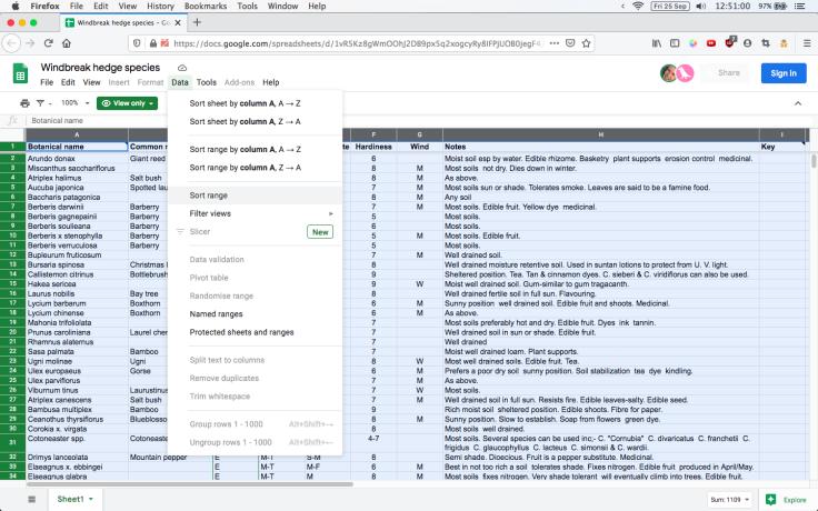 Screenshot of online spreadsheet