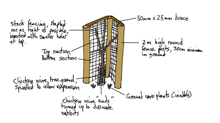 Illustration of construction of tree guard