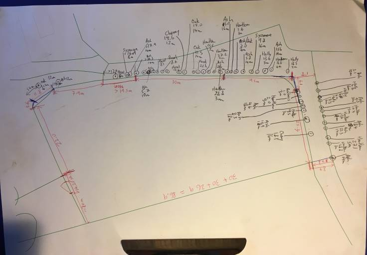 CAD plan of garden with measurements written on in biro