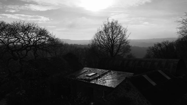 Sunlight bouncing off barn roof, leafless trees silhouetted, all in black and white