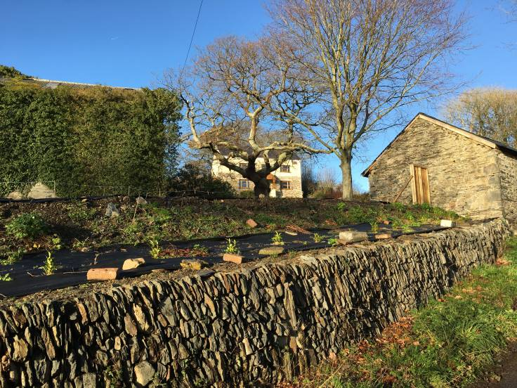 Stone wall, barns & farmhouse on the hill in sunlight