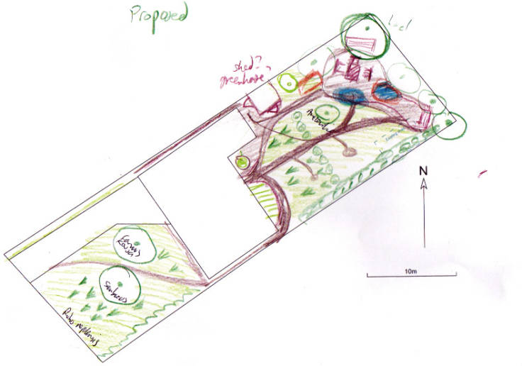 CAD forest garden plan showing colour scribblings of plants, paths & features
