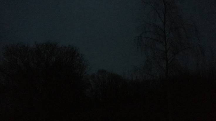 Dark and raining silhouette of trees