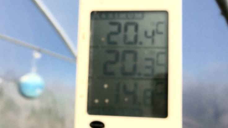 Blurry outdoor Max/Min thermometer in polytunnel