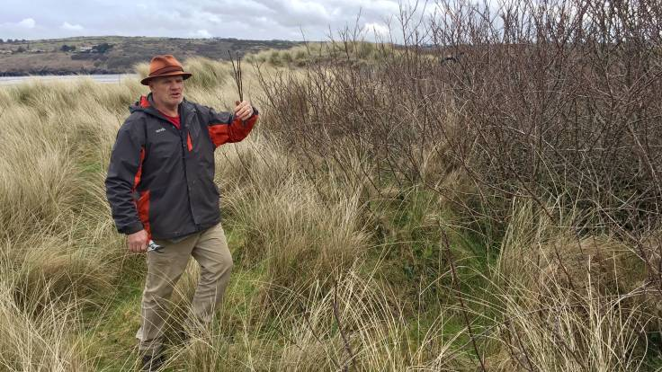Man holding twigs standing in dunes, secateurs in hand