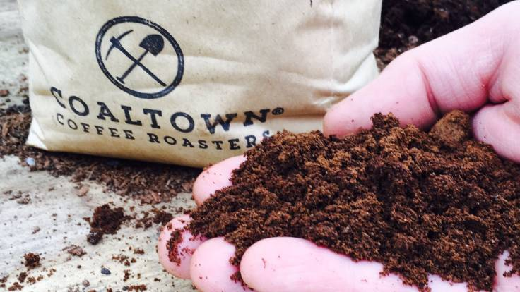 Closeup of hand holding used coffee grounds in front of coffee bag