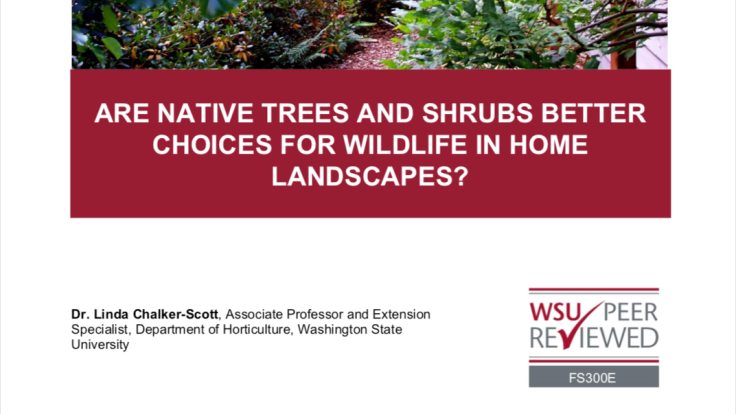 Screenshot of Linda Chalker-Scott fact sheet Are native trees and shrubs better choices for wildlife in home landscapes?