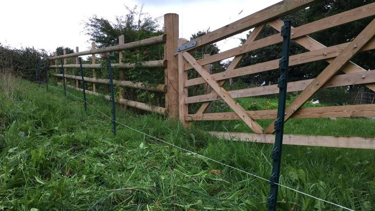 Low electric fence in front of wooden fence and gate