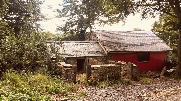 Pigstys, carthouse and apple tree