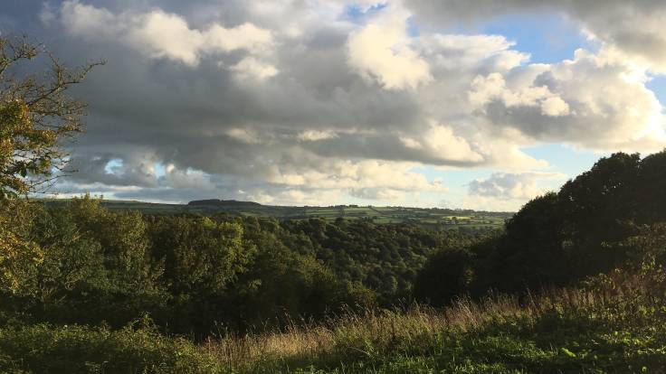 View of wooded valley with dramatic evening clouds