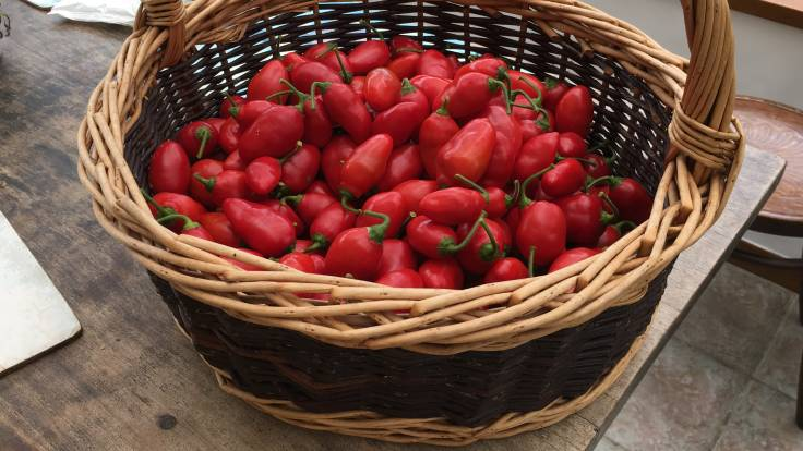 Willow basket half full of small red chillies