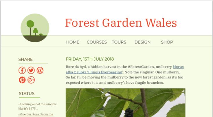 Sreenshot of new web design for Forest Garden Wales