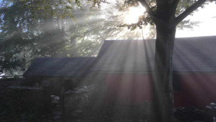 Sunbeams over outbuildings and through trees