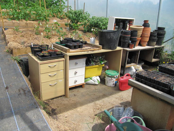 Work area inside polytunnel, desks and shelves stacked with pots