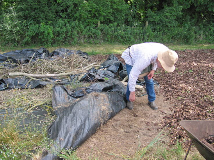 Man with hat lifting up sheet mulch to show bare soil beneath