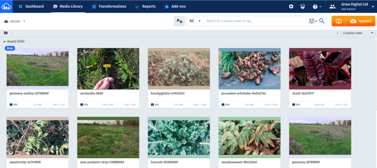 Screenshot of online photo catalog interface
