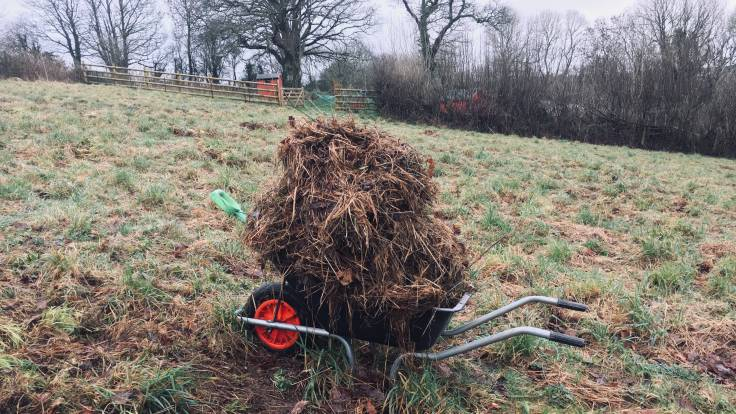 Wheelbarrow in field piled with half rotted hay