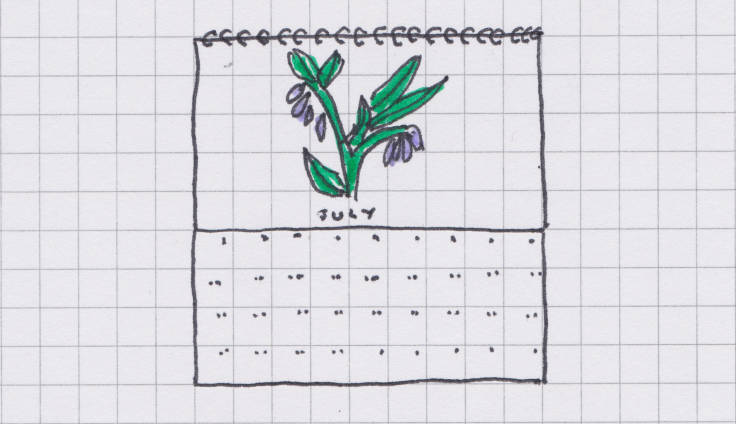 Sketch of wall calendar