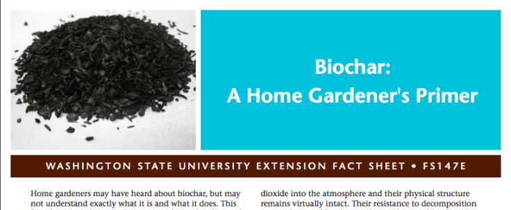 Screenshot of Biochar factsheet
