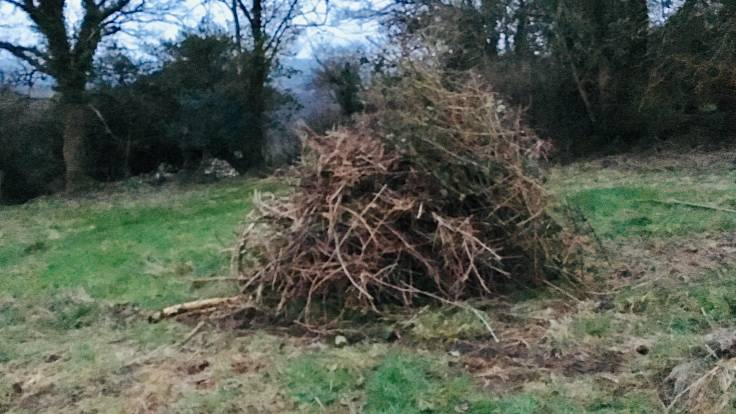 Big pile of branches and bramble ready to be a bonfire