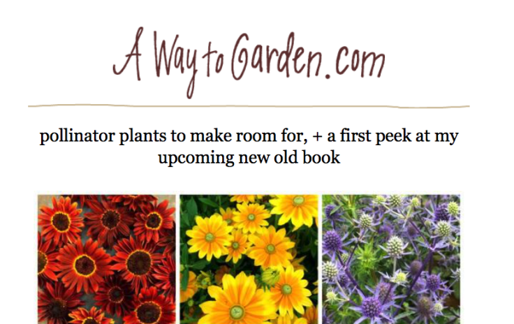 "Screenshot of A Way to Garden website ""pollinator plants"""