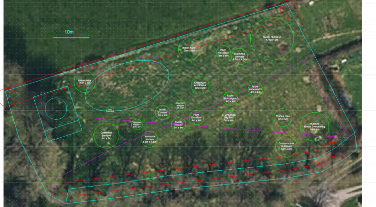 Rough plan of forest garden, satellite photo in background