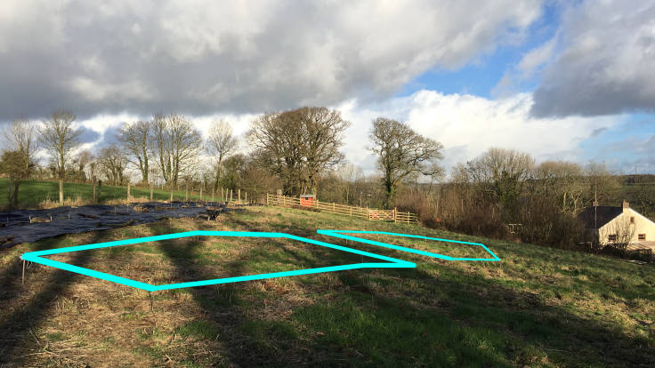 Photo of marked out pond, superimposed with bright cyan lines in Photoshop