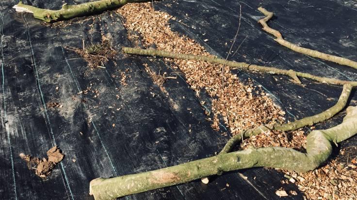 Woodchip mulch on gap between sheet mulch